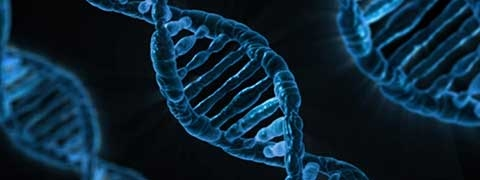 25 november 2018: Lezing/workshop 'Hoe DNA jouw afkomst kan bepalen'